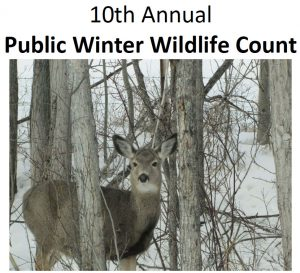 2017 Public Wildlife Count Mule Deer Fawn