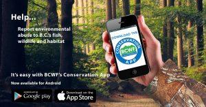 BCWF Conservation App Promo Image