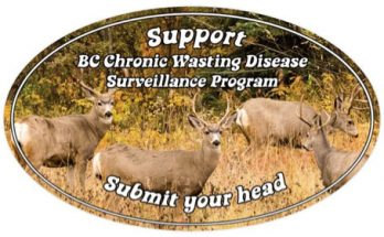CWD Surveillance Program Poster